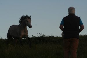 Fairyhill Flow and John